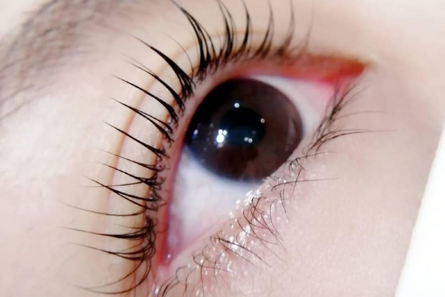 Eyelashstudioflamingo Eyelashperm3sessions 2020 10 19 05 23 21